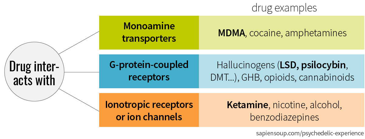 Drugs classification by monoamine transporter, G-protein coupled receptors, ionotropic receptors or ion channels